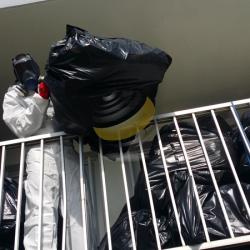 Débarras des sacs et encombrants