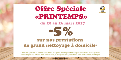 Grand nettoyage printemps 2017 2v services reduction promotion
