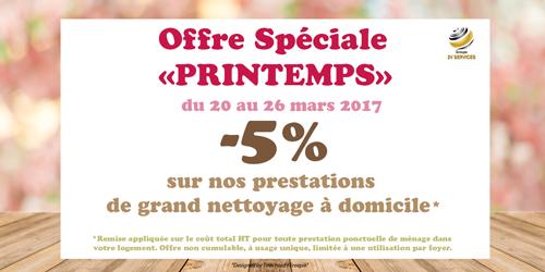 Grand nettoyage printemps 2017 2v services reduction promotion
