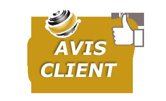Logo avis client 2v
