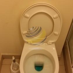 Nettoyage des WC
