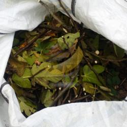 Confinement des déchets organiques